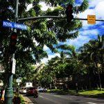 ハワイ旅行で年末でもほぼ確実にレンタカーを借りられる方法