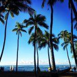 ハワスム(ハワイに住むまで続けるブログ)再開!