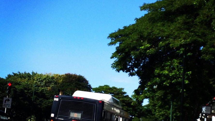 【ハワイ好き必見】オススメのハワイでの移動手段を紹介するよ